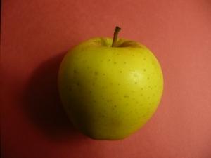 Rosh Hashanah apple--photo by Susan Katz Miller