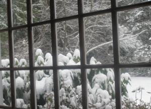 Boston Snow, photo by Susan Katz Miller