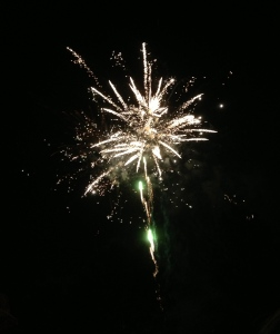 Fireworks, photo by Susan Katz Miller